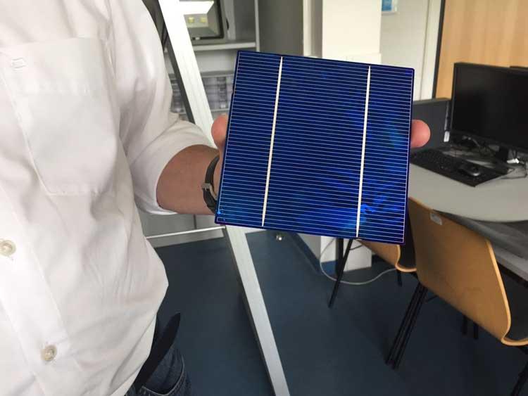 Dieter Franke zeigt, dass jede Solarzelle hauchdünn ist, fast so wie ein Blatt//Foto: Marie Louise Franz