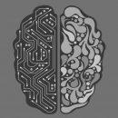 Deep Learning macht den Computer zum künstlichen Gehirn (Quelle: Sean Batty, Pixabay)
