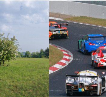 Naturschutz, Naturschutzgebiet, Rennwagen, Quiddelbacher Höhe, Nürburgring, 24-Stunden-Rennen, Rennstrecke, Ausgleichsmaßnahme, Nordschleife