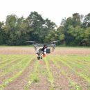 Die Drohne der Uni Bonn im Einsatz über dem Forschungsfeld, Foto: Cyrill Stachniss