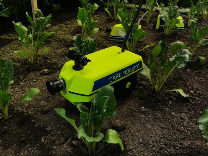 Roboter zur Untersuchung von Pflanzen // Quelle: Timo Brauer