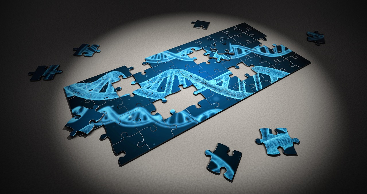 Puzzle DNA-Sequenz, Quelle: Pixabay - CC0 - Freie kommerzielle Nutzung Kein Bildnachweis nötig