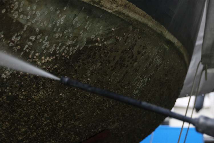 Schiffsrumpf besetzt mit Seepocken und Algen bei der Reinigung.