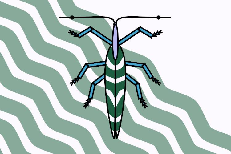 Langer Käfer mit lavendelfarbenem Kopf, grün-weiß gestreiften Flügeln, blauen Beinen und abstehenden Fühlern, deren Spitze in der Mitte der Fühler generiert wurde